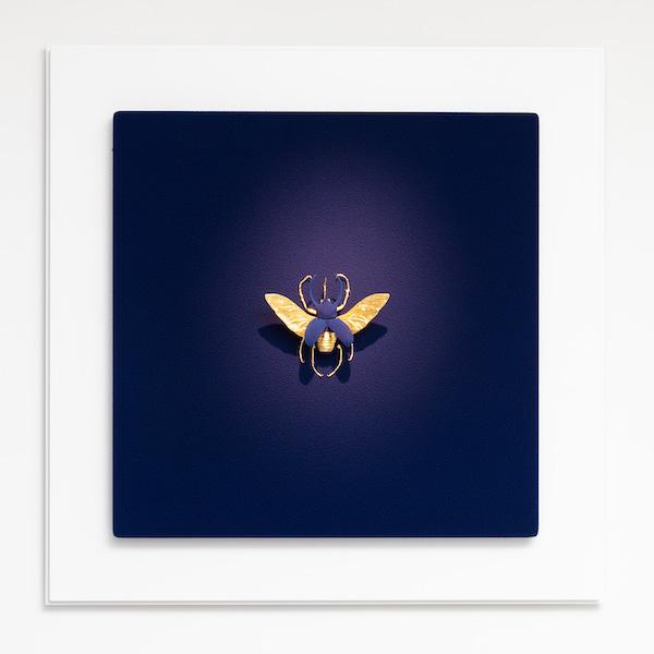 'Anatomia Colours 08.06' (2021) 80 x 80 x 15 cm, Mixed media