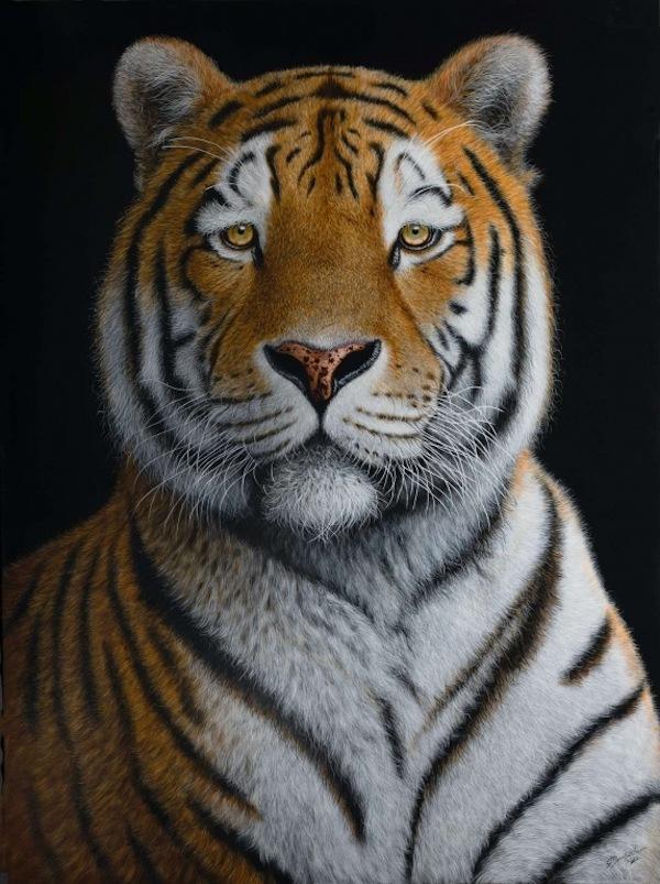 """Tiger"", 120 x 90 cm"